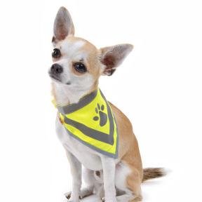reflexní šátky pro psy