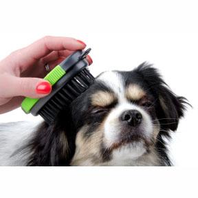 Oválné kartáče pro psy