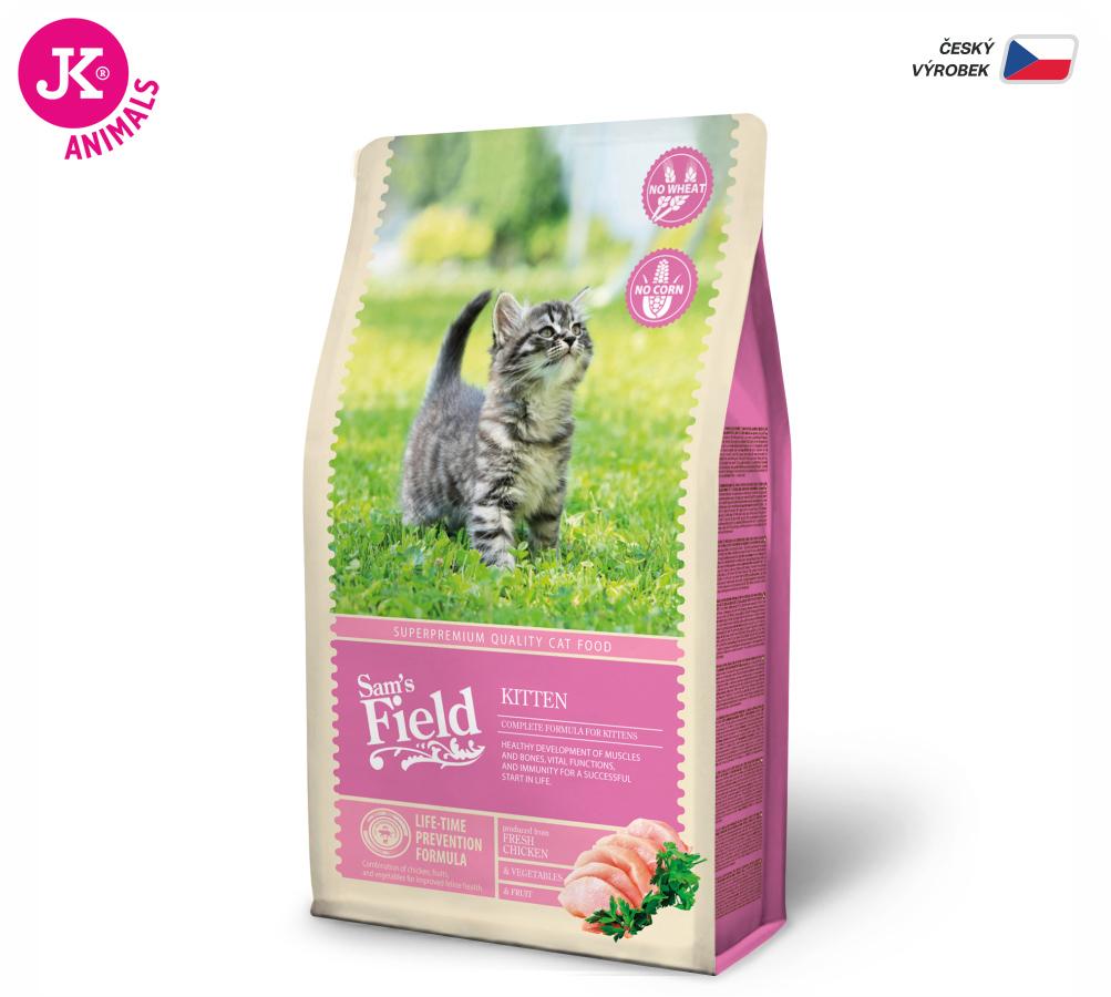 Sam's Field Cat Kitten | © copyright jk animals, všechna práva vyhrazena
