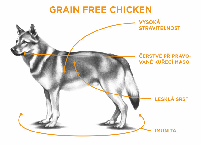SAM'S FIELD GRAIN FREE CHICKEN