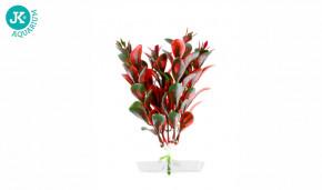 JK ANIMALS Akvarijní rostlinka Red Ludwigia mini 13-16 cm | © copyright jk animals, všechna práva vyhrazena