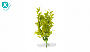 JK ANIMALS Akvarijní rostlinka Hygrophila mini 13-16 cm | © copyright jk animals, všechna práva vyhrazena