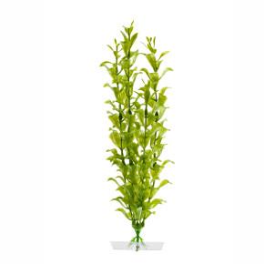 Hygrophila střední, akvarijní plastová rostlinka