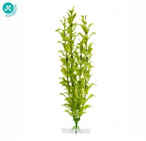 JK ANIMALS Akvarijní rostlinka Hygrophila střední 25-28 cm | © copyright jk animals, všechna práva vyhrazena