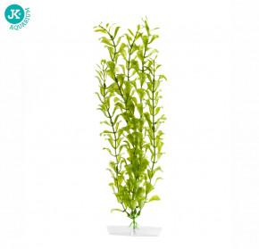 JK ANIMALS Akvarijní rostlinka Hygrophila velká 38-43 cm | © copyright jk animals, všechna práva vyhrazena