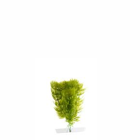 Anacharis mini, akvarijní plastová rostlinka