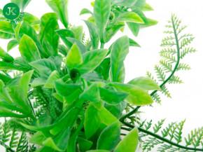 JK ANIMALS Akvarijní rostlinka Ludwigia zelená, 14–17 cm | © copyright jk animals, všechna práva vyhrazena