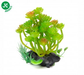 JK ANIMALS Akvarijní rostlinka Kámen střední | © copyright jk animals, všechna práva vyhrazena