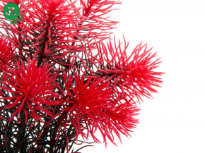 JK ANIMALS Red Anacharis, akvarijní plastová rostlinka 14 cm | © copyright jk animals, všechna práva vyhrazena