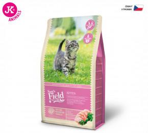 Sam's Field Cat Kitten   © copyright jk animals, všechna práva vyhrazena