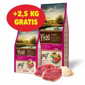 Sam's Field Low Grain Adult Large Lamb - Free Range, superprémiové granule pro dospělé psy velkých a obřích plemen sjehněčím zvolného chovu, 13kg (Sams Field bez pšenice)