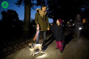 flexi Vario LED Flash Belt (světelný pásek) pro velikost L | © copyright jk animals, všechna práva vyhrazena