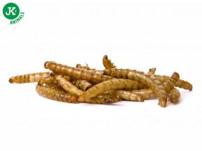 Sušení mouční červi JK Dried Mealworms, 80g | © copyright jk animals, všechna práva vyhrazena